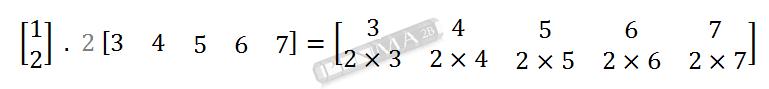 Perkalian Matriks 2x1 dengan 1x5 Baris 2